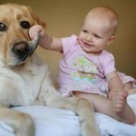 30 photos desmuestran why your child should have a pet