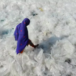 They are are loading the planet! 12 reasons why you should not use plastic bags